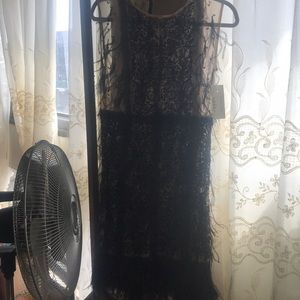 Sleeveless Sheer Feathered Cocktail Dress